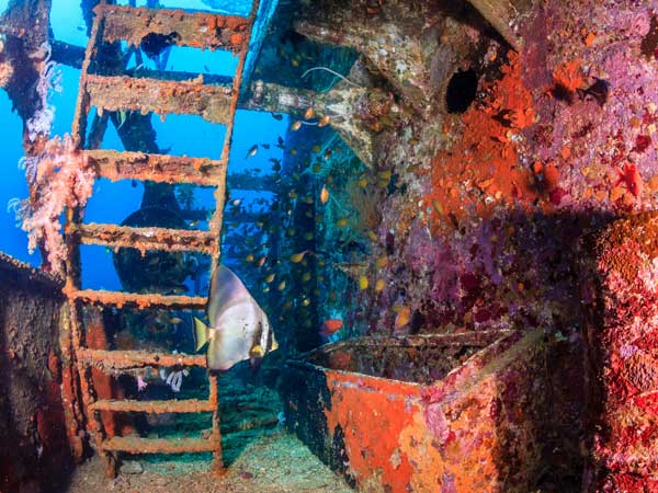 King Cruiser Phuket wreck diving